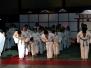 Japanische Nacht 2010